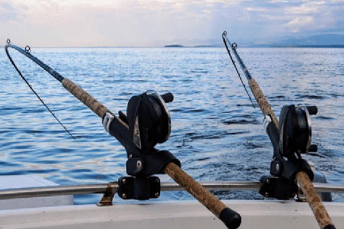 la mejor caña de pescar