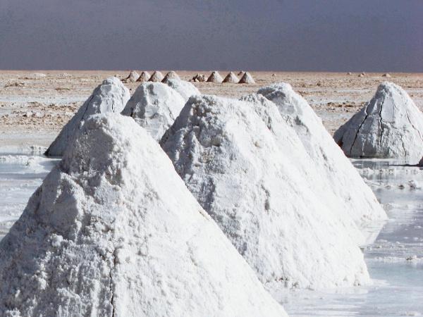 salt filled on land