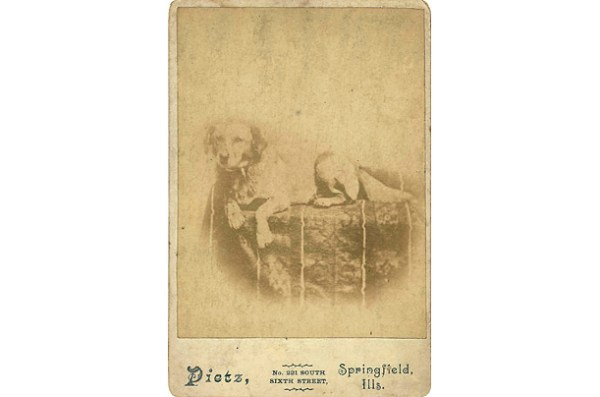 Presidential dogs: Fido