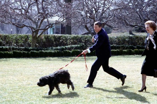 Presidential dogs: Ronald Reagan With Lucky