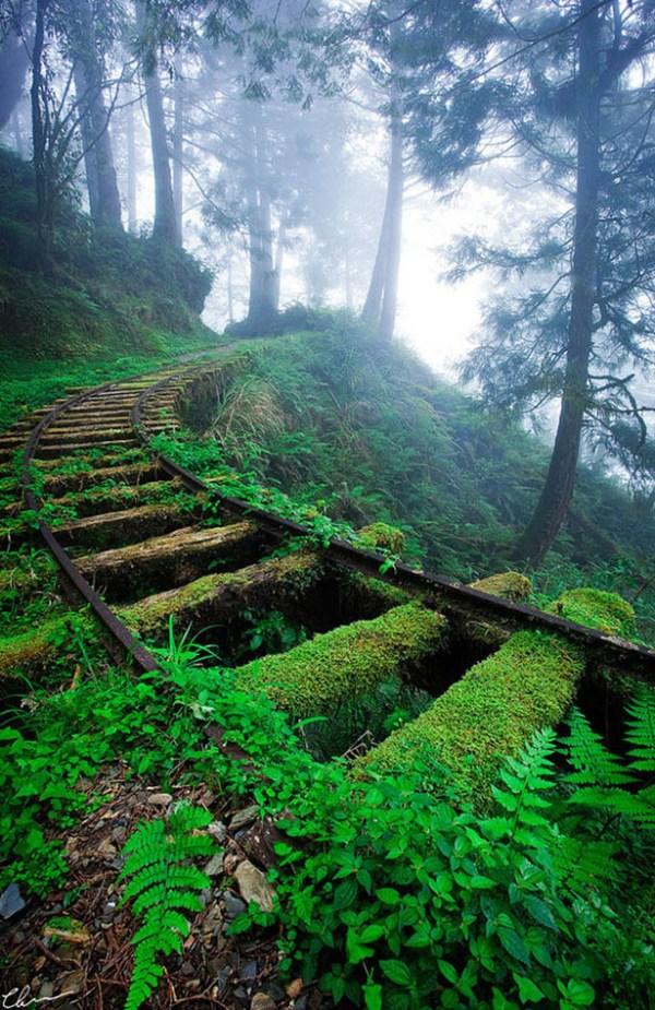 Abandoned places Bridge