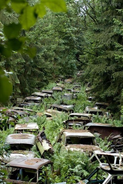 Chatillon Car Graveyard