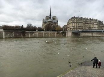 Quai d'Orléans