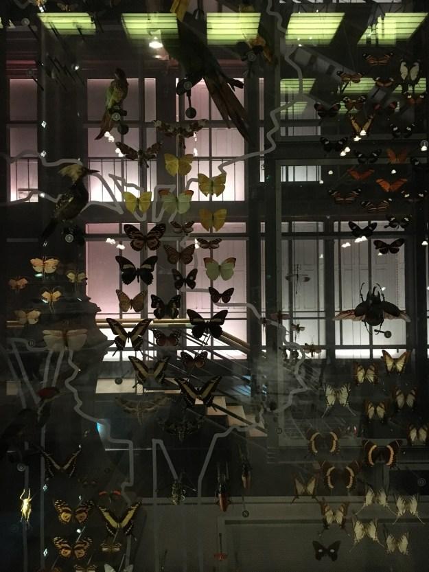 Galeria da Grande Evolução - Jardin des Plantes