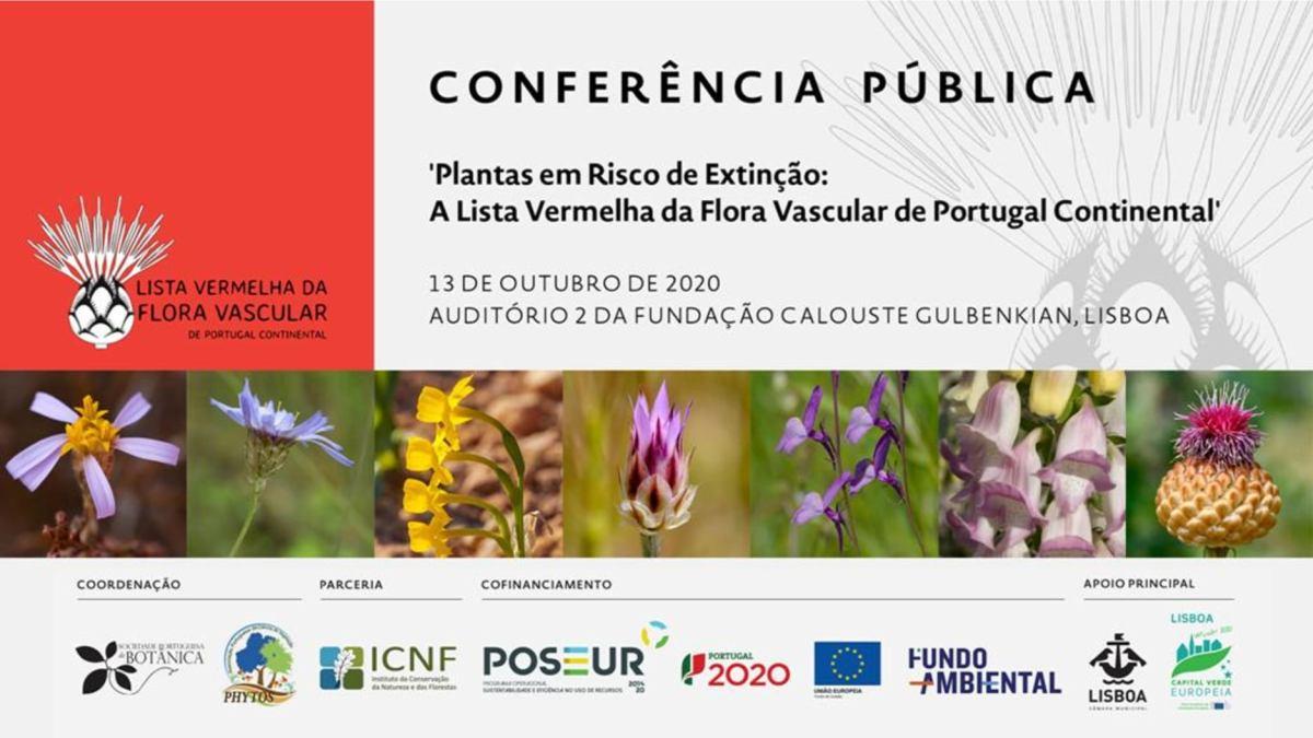 Apresentação de Miguel Porto, Coordenador Geral do projeto (SPBotânica)