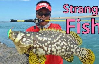 Strangest-Fish-Ever-Caught