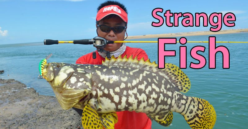 Strangest-Fish-Ever-Caught