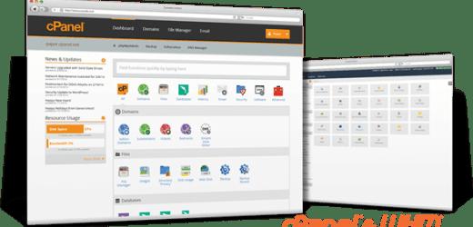 Ce trebuie sa ai in vedere atunci cand optezi pentru servicii de gazduire website profesionala?