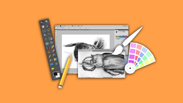 Be A Photoshop Master With These 10 Best Udemy Courses Listemall
