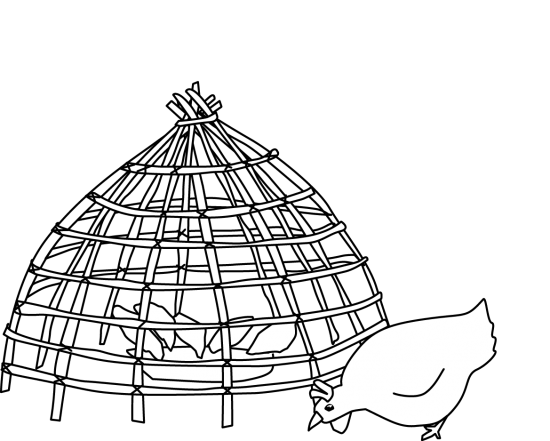 Chicken creep: exclusion of adult poultry for use in avian influenza training manual in developing countries (digital illustration)