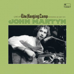 ILPS-9980-John-Martyn-Hanging-Lamp