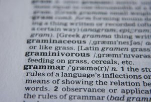 Imge of a dictionary showing the entry for grammar