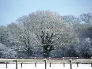 Photograph of the Kent countryside, blanketed in snow.