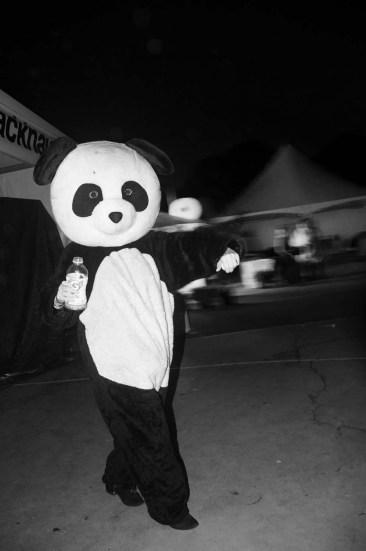 That Fucking Panda by LE