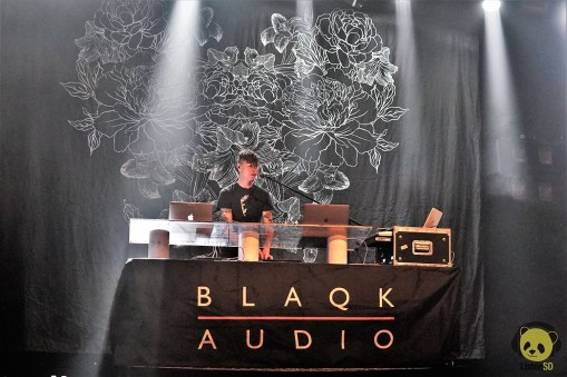 Blaqk Aud WATERMKD LSD (6)