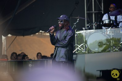 Blood Orange at Governors Ball 2019 by Francesca Tirpak for ListenSD