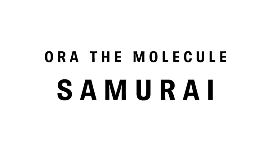 Track Review: Ora The Molecule: Samurai