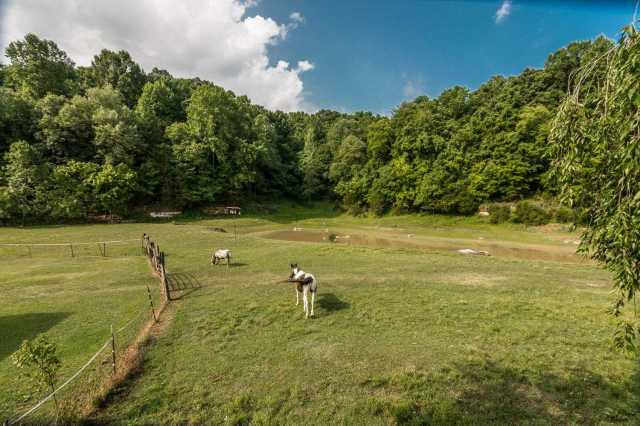 $459,900 - 3Br/2Ba -  for Sale in None, Goodlettsville