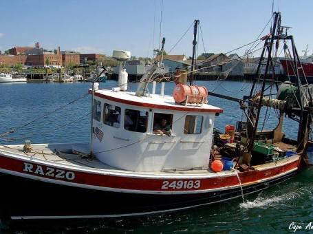 Cape Ann Fresh Catch