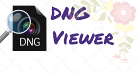 DNG viewer