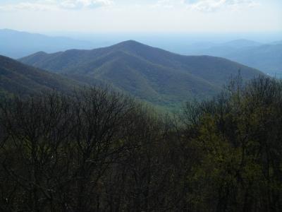 Terrapin Mountain 3 506 Virginia