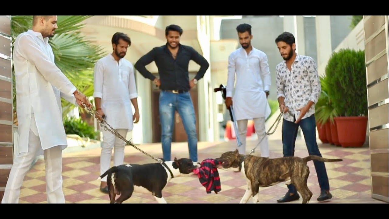 gulzar song-FAN 2 | AARDEE | FULL VIDEO | LATEST PUNJABI SONG 2017 | AAPKA APNA PRODUCTION-gulzar chhaniwala song