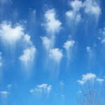 Jellyfish Clouds 5