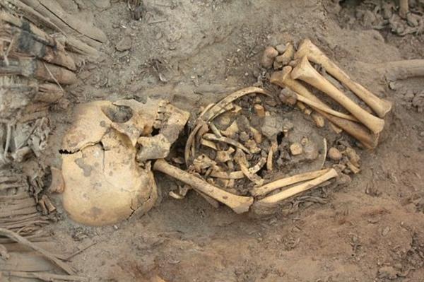Sacrificed baby skeletons