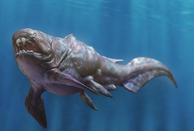 Armored Fish, fish, giant fish, prehistoric fish, dinosaur, dino fish, water dino,