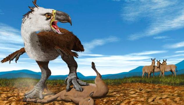 terror bird, giant bird, dino bird, prehistoric bird, myth, legend, fantasyread, mustread, goodread,