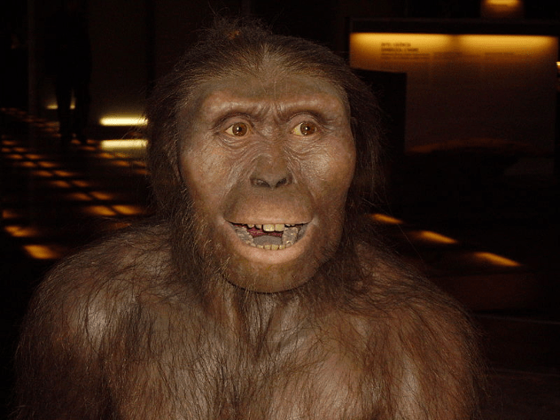 Austrolopithecus