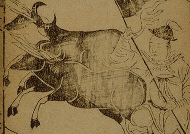 8-tien-tans-fire-bulls