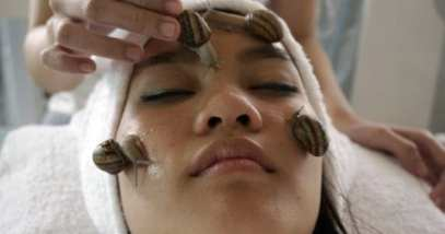 Snail Treatment Featured