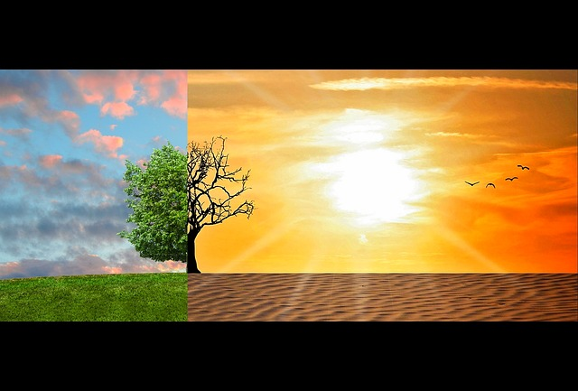 Negative effects Of Climate Change In Nigeria