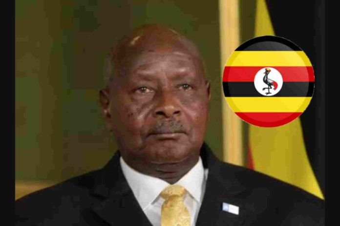 Yoweri Museveni is the eight oldest president in Africa, 2021