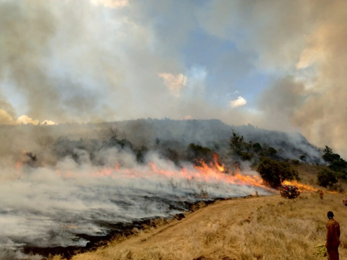Kenyans to Sue British Army Over Wildfire that Destroyed 12,000 acres