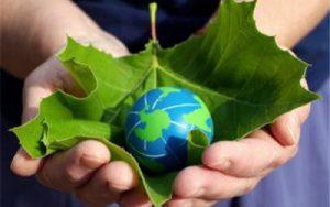 razvitiya-zelenoy-energetiki