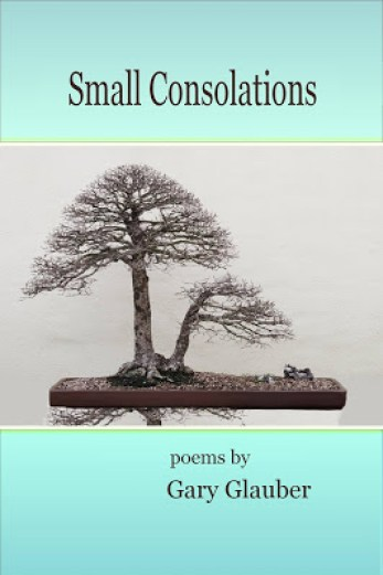 small consolations by gary glauber