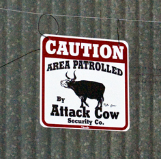 Area Patrolled by Attack Cow sign