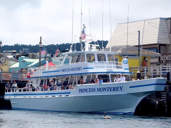 Bay cruiser