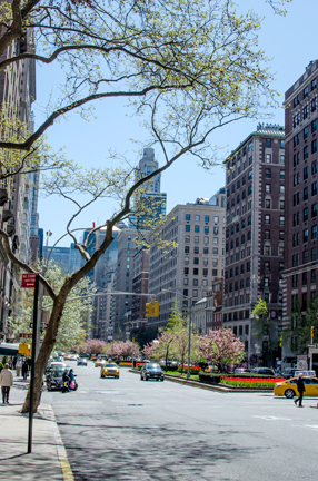 NYC in Spring