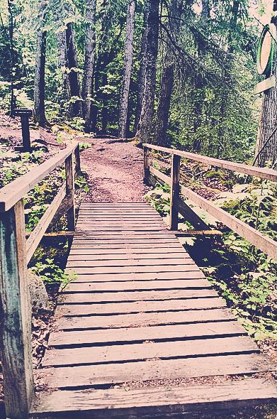 Bridge to Reid Falls