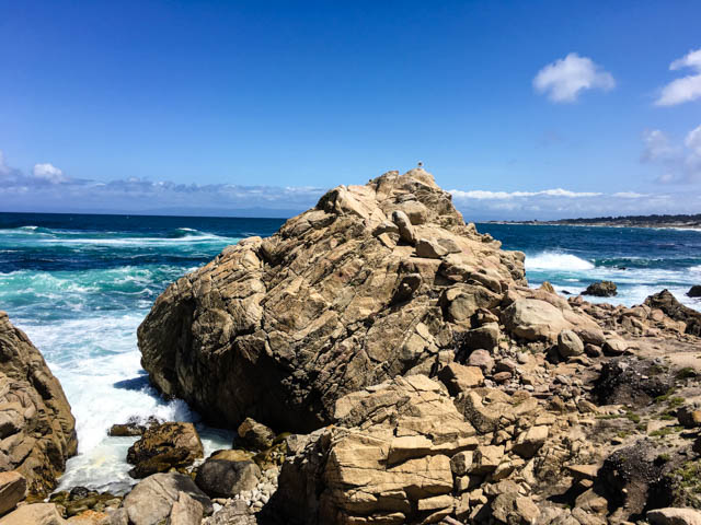 view along Asilomar Beach in Monterey, CA