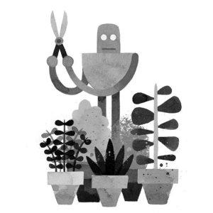 wildrobot2