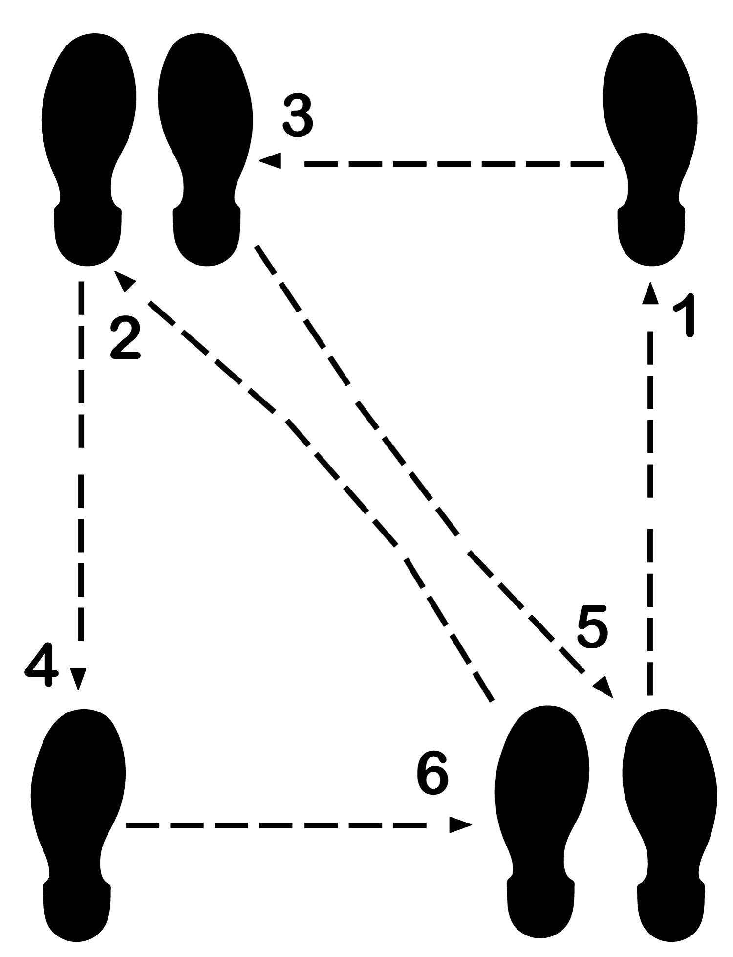 Litemark Durable Dance Floor Diagram Decal 8 Step Kit