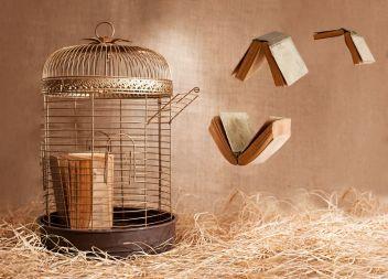 books-in-flight-censorship-1437407015