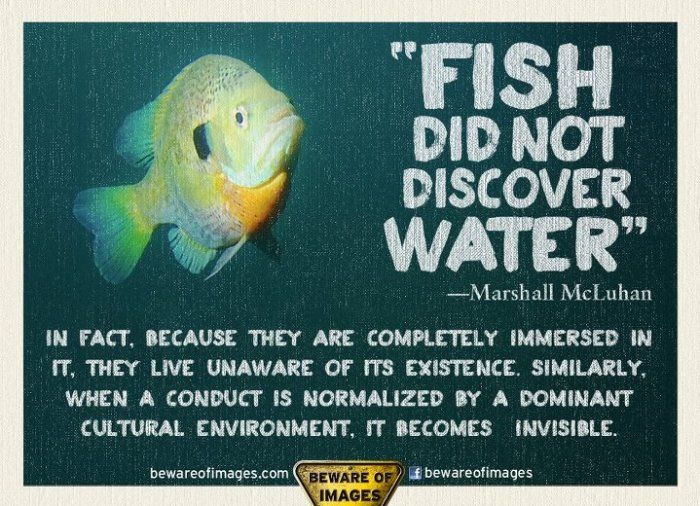 fish-did-not-discover-water-marshall-mcluhan-in-fact-because-they-are-completely-immersed-in-it-they-live-unaware-of-its-existence-similarly-when-a-conduct-is-normalized-by-a-dominant-cu