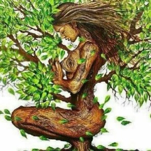 eco-feminism