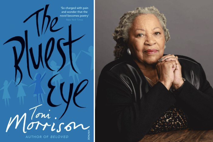 Analysis of Toni Morrison's Novels | Literary Theory and Criticism