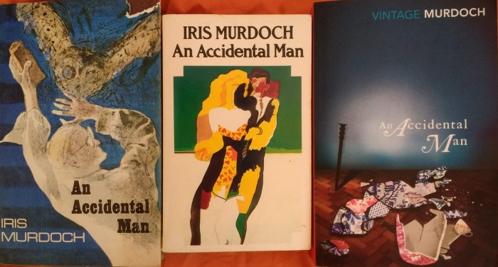 14-an-accidental-man-all-covers